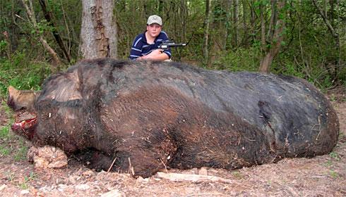 pigx-large