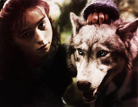 companyofwolves1